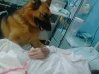 Foto: Hospital Agudo
