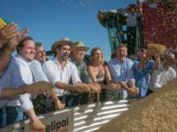Colheita do arroz no Rio Grande do Sul é aberta oficialmente