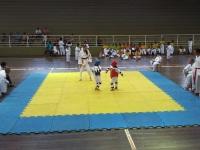 Projeto vai levar Taekwondo gratuito a crianças de São Sepé