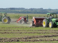 Clima deve favorecer cultura do arroz nos próximos meses