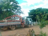 Caminhões chegam à localidade do Ipê para restabelecimento da energia