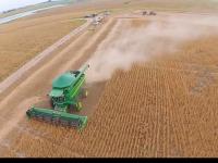 Ajuda que vem do céu: agricultor de São Sepé utiliza drones para monitorar lavouras