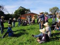 Dia de Campo em Santa Maria vai debater diversificação de culturas