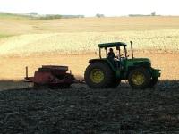Clima seco e frio favorece evolução do plantio do trigo no Rio Grande do Sul