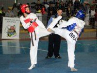 Sepeense conquista vaga na Seleção Gaúcha de Taekwondo