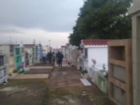 Grupo realiza mutirão contra o mosquito Aedes aegypti no cemitério de São Sepé