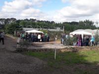 Representantes de São Sepé participam de capacitação sobre produção de morangos