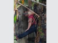 Homem suspeito de furto fica entalado em árvore, em Cachoeira do Sul