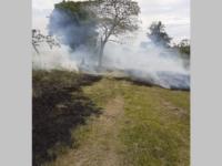 Bombeiros controlam fogo no Parque Ambiental de São Sepé