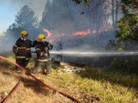 Bombeiros controlam incêndio em vegetação às margens da BR-392