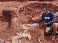 Fósseis de dinossauros são encontrados pela primeira vez em Restinga Sêca